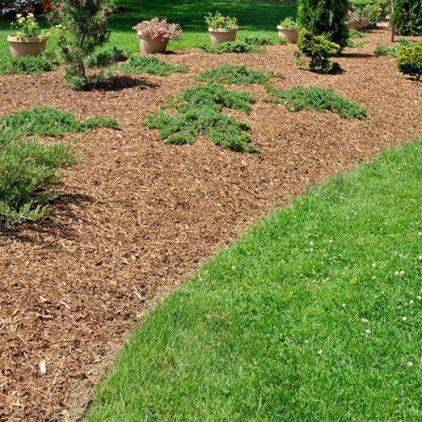 Landscaping Bark Suppliers : Ornamental bark mulch supplier