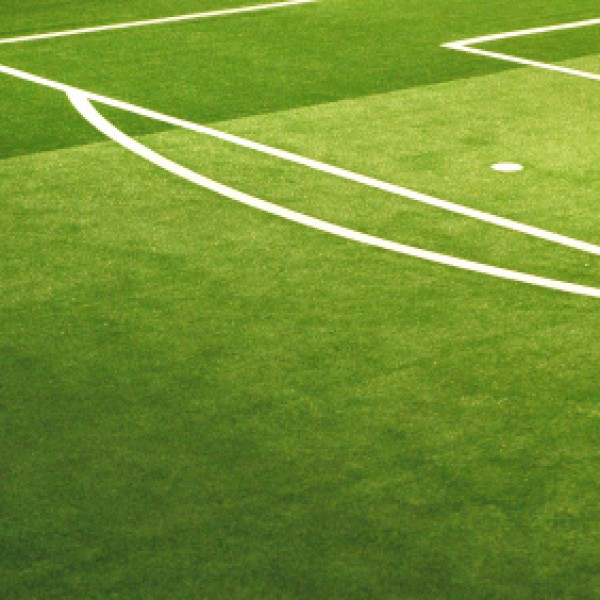 Sports Grass Seed Buy Football Pitch Grass Seed Online