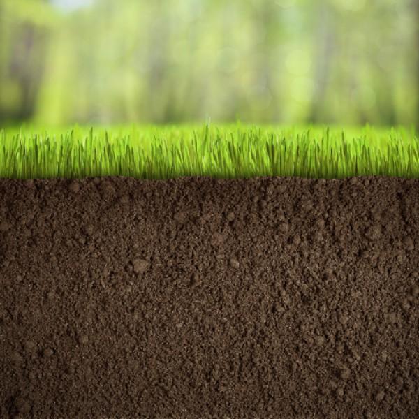 premier turfing topsoil garden soil online topsoil buy