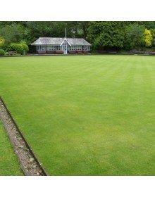 Bowling green turf