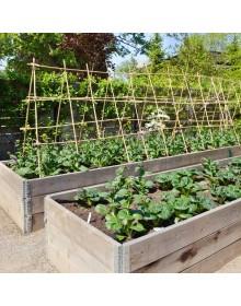 Premier fruit and vegetable soil